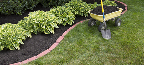 Ryan Conway Landscaping Inc | Nantucket,MA | Lawn Care